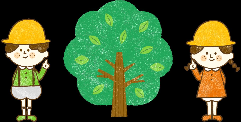 イラストくるみの木